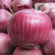 Bonsai Plants Spanish Sweet Onion Seeds | Feeds, Supplements & Seeds for sale in Lagos State, Agege