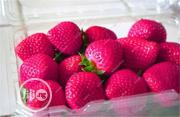 Strawberry Seeds | Feeds, Supplements & Seeds for sale in Lagos State, Agege