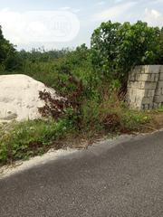 A Big Plot of Land for Sale. | Land & Plots For Sale for sale in Delta State, Ugheli