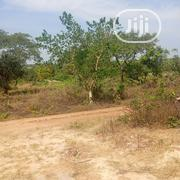 Acres Of Lands For Sale At Ogbomoso-igbeti Road | Land & Plots For Sale for sale in Oyo State, Ogbomosho North