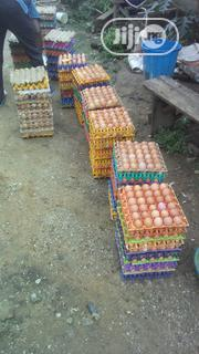 Eggs | Meals & Drinks for sale in Abuja (FCT) State, Karmo