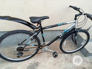 Adult Bicycle (Size 26)