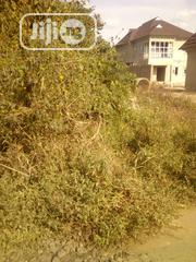 2 Plot of Land Along Olorunda Akobo Road Ibadan | Land & Plots For Sale for sale in Oyo State, Akinyele