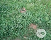 A Plot of Land for Sale at Alapere Kosofe LCDA. | Land & Plots For Sale for sale in Lagos State, Kosofe