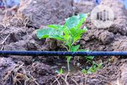 Drip Line Irrigation | Farm Machinery & Equipment for sale in Kwara State, Ilorin West