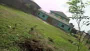 Half Plot of Land in Omole Phase2 Extension Olowora | Land & Plots For Sale for sale in Lagos State, Magodo
