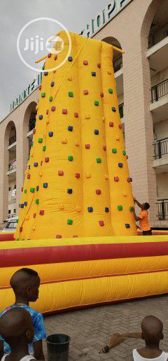 Big Bouncing Castle With Climber