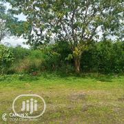 1,200m2 Bareland For Sale | Land & Plots For Sale for sale in Abuja (FCT) State, Jikwoyi