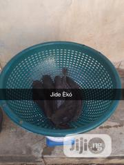 Table Size Catfish | Livestock & Poultry for sale in Lagos State, Oshodi-Isolo