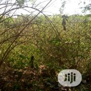 Park And Garden Along Next Cash And Carry Road,Mabushi   Land & Plots For Sale for sale in Abuja (FCT) State, Mabushi
