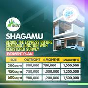 Dry and Plain Plots for Sale at Shagamu With Registered Survey | Land & Plots For Sale for sale in Ogun State, Sagamu