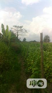 Farmland In Epe By Augustine Uni For Sale | Land & Plots For Sale for sale in Lagos State, Epe