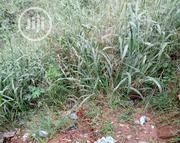 Acre of Land at Oba Akran Ikeja | Land & Plots For Sale for sale in Lagos State, Ikeja