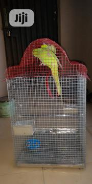 Parrot Cage   Pet's Accessories for sale in Lagos State, Alimosho