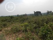5acres of Land for Sale at Alabata Village Moniya Ibadan | Land & Plots For Sale for sale in Oyo State, Akinyele
