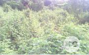 4 Plots of Fenced Land for Sale in Shagari Village, Akure | Land & Plots For Sale for sale in Ondo State, Akure
