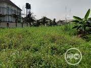 2 Empty Plots for Sale by Potter Estate Off Immaunel College | Land & Plots For Sale for sale in Rivers State, Port-Harcourt