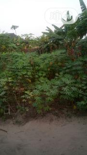 Deed of Conveyance | Land & Plots For Sale for sale in Rivers State, Port-Harcourt