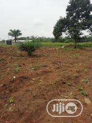 One Acre of Land (With Borehole) Near Lusada for Sale | Land & Plots For Sale for sale in Ogun State, Ado-Odo/Ota