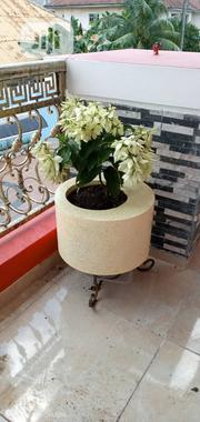New Flower Pots | Garden for sale in Lagos State, Ajah