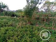 Land At Oke-bola Ayeyemi Ondo City | Land & Plots For Sale for sale in Ondo State, Ondo