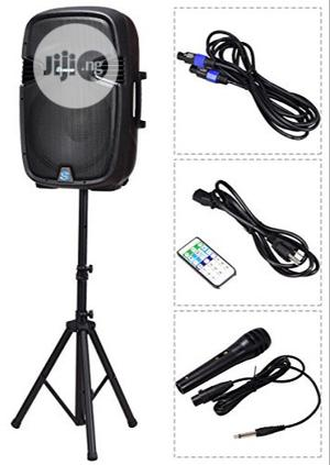 PA System With Two Wireless Mic