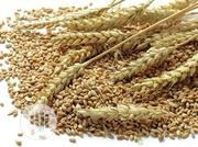 Wheat Seeds In Tonnes | Feeds, Supplements & Seeds for sale in Lagos State, Lagos Mainland