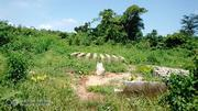 A Plot of Land With Family Conveyance | Land & Plots For Sale for sale in Lagos State, Lagos Mainland