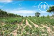 Farming Land | Land & Plots For Sale for sale in Oyo State, Afijio