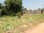 3 Plots of Land Inside the Holy Family Youth Village Amansea Awka | Land & Plots For Sale for sale in Anambra State, Awka