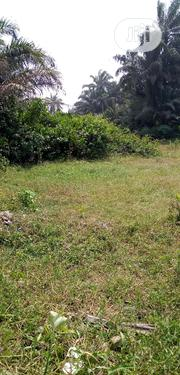 10 Acres Of Land For Sale At Oyigbo | Land & Plots For Sale for sale in Rivers State, Oyigbo