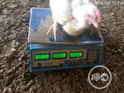 9000 Broiler | Livestock & Poultry for sale in Lagos State, Epe