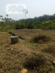 Plain And Open Ground For Sell With Foundation On It | Houses & Apartments For Sale for sale in Ondo State, Ondo