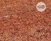 Cocoa Marchant | Feeds, Supplements & Seeds for sale in Ekiti State, Ise/Orun