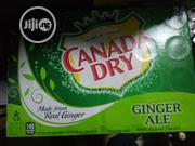 Canada Dry Ginger Ale X24 330ml | Meals & Drinks for sale in Lagos State, Ikoyi