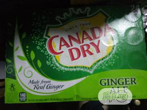 Canada Dry Ginger Ale X24 330ml