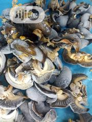 Naijpotseafood | Meals & Drinks for sale in Lagos State, Lekki Phase 1