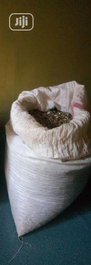 Moringa Seeds | Feeds, Supplements & Seeds for sale in Lagos State, Alimosho