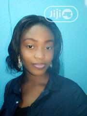 Field Sales Agent   Sales & Telemarketing CVs for sale in Lagos State, Alimosho