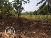 6 Plot Of Land | Land & Plots For Sale for sale in Imo State, Ohaji/Egbema
