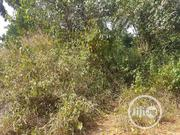 For Famr Use 10 Plot | Land & Plots For Sale for sale in Imo State, Ohaji/Egbema