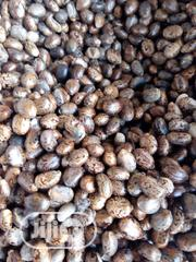 Castor Seeds - Indian Brown | Feeds, Supplements & Seeds for sale in Abuja (FCT) State, Kubwa
