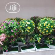 Decor Flowers | Garden for sale in Lagos State, Alimosho