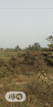 Two Acres of Land for Sale Along Agbara Igbsa Road | Land & Plots For Sale for sale in Ogun State, Ogun Waterside