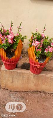 Latest Flower With The Pot | Garden for sale in Delta State, Oshimili South