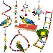 Parrot Trainings | Birds for sale in Lagos State, Alimosho