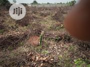 Land in Residential Area for Sale | Land & Plots For Sale for sale in Ogun State, Ado-Odo/Ota