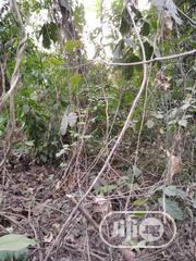 Acre Of Land | Land & Plots for Rent for sale in Oyo State, Ona-Ara