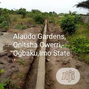 Ala-Udo Gardens and Parks | Land & Plots For Sale for sale in Imo State, Mbaitoli
