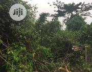 Land For Sell At Omi Audio | Land & Plots For Sale for sale in Oyo State, Ibadan